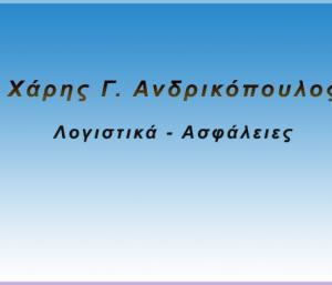 ΑΝΔΡΙΚΟΠΟΥΛΟΣ ΛΟΓΙΣΤΙΚΑ - ΑΣΦΑΛΕΙΕΣ ΛΕΧΑΙΟ
